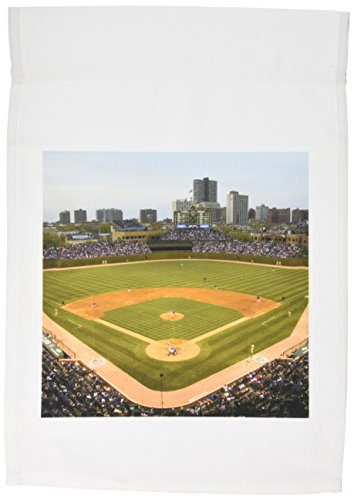 3drose-fl-lotto-1-cubs-baseball-game-wrigley-field-chicago-ilus14-dfr0124david-r-frazier-giardino-ba