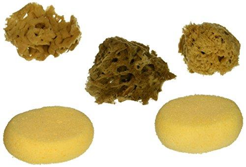 Watercolor Sponges 6/Pkg-