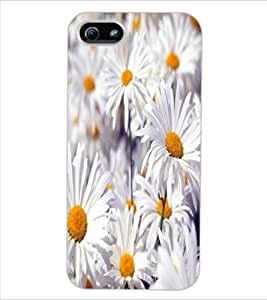ColourCraft Beautiful Flowers Design Back Case Cover for APPLE IPHONE 5