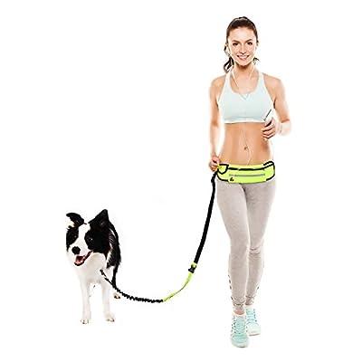 Jogging-Leine/Hunde frei Leine/Hundeleine/Laufleine/ Nylon Hunde frei Hundeleine + verstellbarem wasserabweisender Hüftgurt für mittelgroße bis große Hunde max 50kg -Reflektierend Haltbar elastisch Reißfeste stabile Nylon-Leine - 130cm bis 180cm dehnbar,