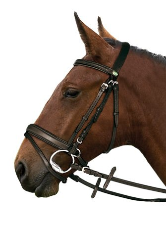 leather-padded-bridle-with-free-rubber-reins-all-sizes-black-or-brown-black-full