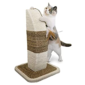 Rosewood Natural Cat Scratcher