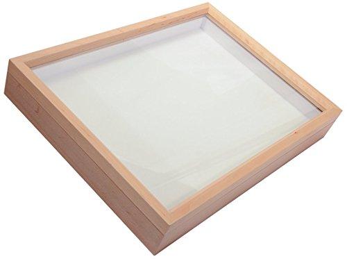 insetto-storage-box-display-case-vuoto-entomologia-museum-box-con-inserto-in-schiuma-di-polietilene-