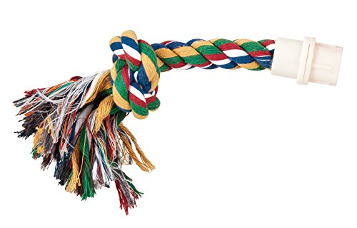 J.W. Booda Byrdy Bush Interaktives Spielzeug Vogel, Farben variieren (Pineapple Bird Feeder)