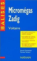 Zadig et Micromégas