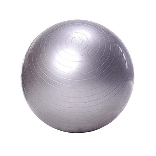 Dapang Yoga Übung Ball (65Cm) Extra Thick Yoga Ball Chair, Anti-Burst Heavy Duty Stability Ball unterstützt 700Lbs, Birthing Ball mit Schnellpumpe (Office & Home & Gym),Silver