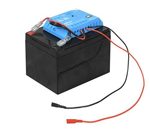 12V-Blei-Vlies-Akku 12 Ah mit Laderegler - kompakter wiederaufladbarer Akku für Ihr 9 Volt Weidezaungerät/Elektrozaungerät - mit Überlade- und Tiefentladeschutz - ideal für Solarsysteme