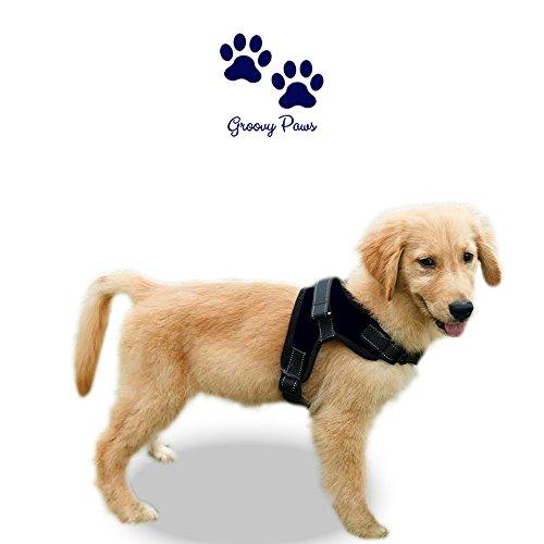 Keine Pull Hundegeschirr Wahl von groovypaws, keine Pull Reflektierende Verstellbare Hundegeschirr oder Halsband, Service Weste, Dog Gepolsterte Weste, Körper, Walking Geschirr mit Griff (Medium)