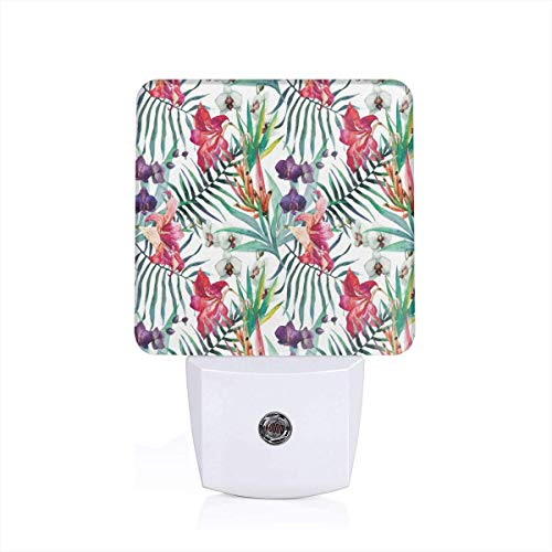 Watercolored Tropical Exotic Foliage Vibrant Color Palette Hawaiian Summer Season Plug-in LED Night Light Lamp with Dusk to Dawn Sensor, Night Home Decor Bed Lamp -