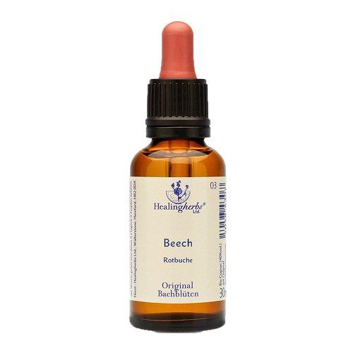 BACHBLÜTEN Beech Healing Herbs Tropfen 30 ml Tropfen