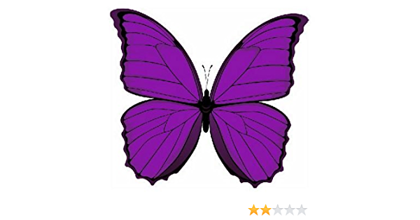Fahnenmax Autoaufkleber Sticker Schmetterling Lila Aufkleber Auto