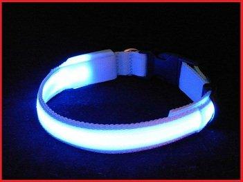 "LED Halsband für Hunde, BLAU Größe ""M"" 40-48cm, 3 Blinkstufen, Hundehalsbänder Leuchthalsband"