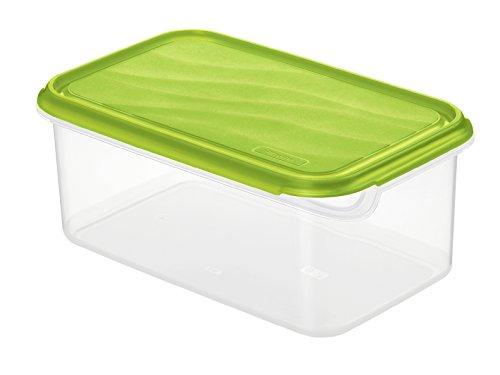 Rotho Rondo Frischhaltedose, Kunststoff (BPA-frei), grün / transparent, 2 Liter (24 x 16 x 9,7 cm) 2 Liter Dose