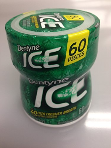 dentyne-ice-gum-spearmint-diversion-safe-stash-by-dentyne-ice-gum
