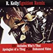 Ignition Remix [CD 1]