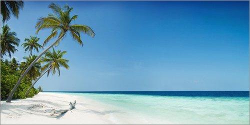 Posterlounge Alu Dibond 80 x 40 cm: Malediven Paradies Ansicht von Mayday74