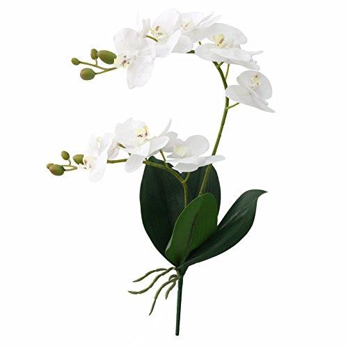 jarown Künstlicher Blumen echt Touch Phaleanopsis Orchideen Blätter Äste für Home Bonsai Garden Dekoration weiß