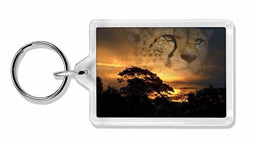 Cheetah -Uhr Foto Schlüsselbund TierstrumpffüllerGeschenk Cheetah Uhr