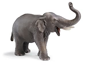 Schleich World Of Nature: Wild Life Collection Indian Elephant