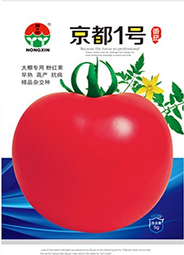 Graines de Pékin F1 Rose Rouge Big tomate, 1 Original Pack, 400 graines / Pack, rares légumes Heirloom Seeds optimisation # NF597