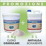 PISCINE ITALIA Cloro granulare 5 kg + 5 L antiagla