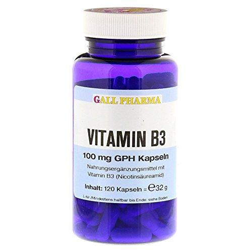 Gall Pharma Vitamin B3 100 mg GPH Kapseln, 120 Stück, 1er Pack (1 x 120 Stück)