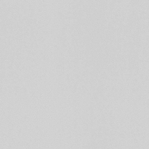 Vliestapete Rasch Uni Einfarbig hellgrau Wallpaper Color 518054