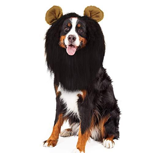 Baipin Löwenmähne für Hunde, Süße Haustierkostüm Haustier Löwenmähne Löwenmähne mit Ohren für Kleine Hunde Oder Welpen, Schwarz