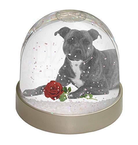 Advanta Staff Bull Terrier Hund (B+W) mit roter Rose Foto Schneekugel Wasserball Strumpf F Mehrfarbig 9,2 x 9,2 x 8 cm - Ad-strümpfe