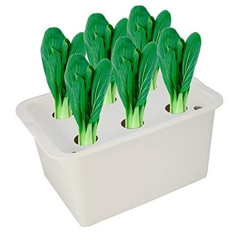 nzuchttopf Pflanztopf Blumentopf Soilless Gemüseanbau Gemüse Pflanzen Pflanzenwachstum 6 Löcher für Indoor Outdoor(Grau) ()