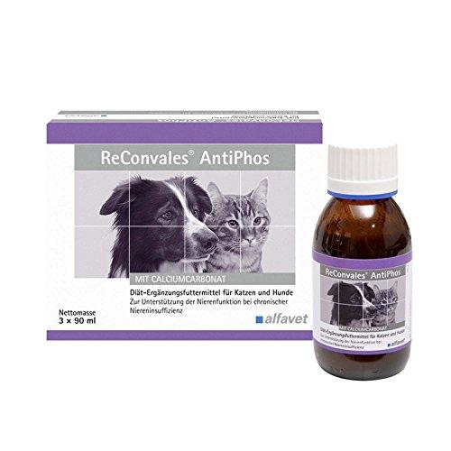 Reconvales AntiPhos 3 x 90 ml Katze/Hund