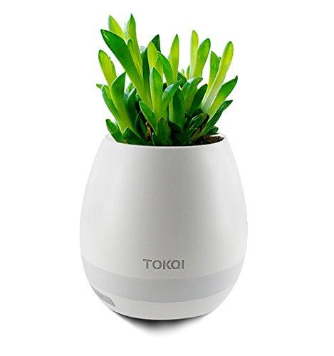 Smarttouch Bluetooth Lautsprecher Musik Blumentopf Pflanzer Gerät LED Nachtlicht (Weiß)