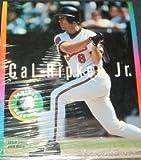 Cal Ripken Jr. Fantasy Baseball (輸入版)