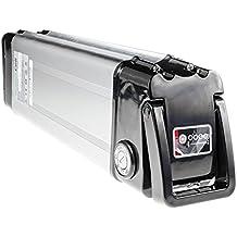 Green Cell® E-Bike Batería para bicicletas eléctricas Silverfish ( Panasonic Li-Ion cells 11.6Ah 24V ) Cargador incluido