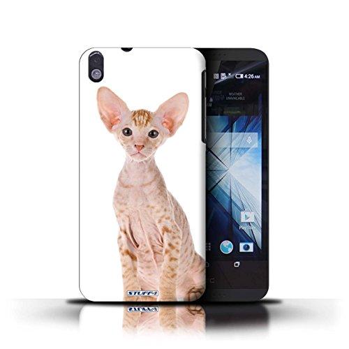 Kobalt® Imprimé Etui / Coque pour HTC Desire 816 / Scottish Fold conception / Série Espèces de chats Peterbald