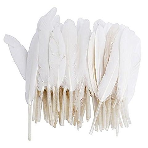 Hugestore 100pcs plumes d'oie pour décorations de mariage Home Decor DIY Crafts