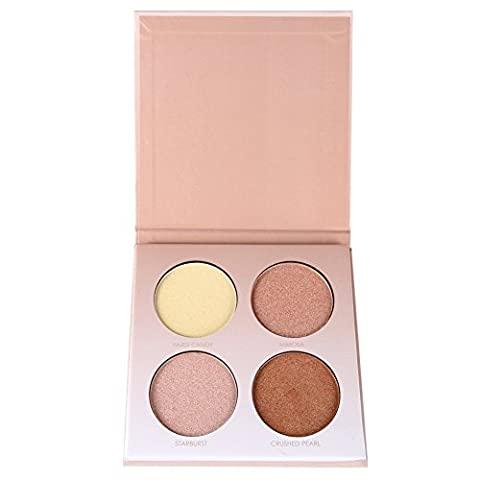 Petansy 4 Colors Face Concealer Kit Shimmer Highlighters Contour Powder