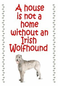 Magnetsandhangers Irish Wolfhound - Novelty Dog Fridge Magnets - House by magnetsandhangers -
