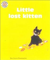 The Little Lost Kitten