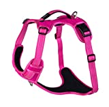 Rogz SJX05.K Explore Geschirr, XL, pink