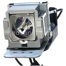 MicroLamp ML10520 lámpara de proyección - Lámpara para proyector (BenQ: MP511+)