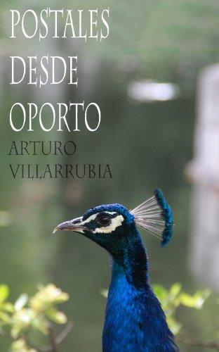Descargar Libro Postales desde Oporto de Arturo Villarrubia