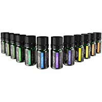 Anjou Essential Oils Set (12 x 5 mL Oils, 100 Percent Pure Lavender, Sweet Orange, Tea Tree, Eucalyptus, Lemongrass, Peppermint, Bergamot, Frankincense, Lemon, Rosemary, Cinnamon, and Ylang-Ylang)