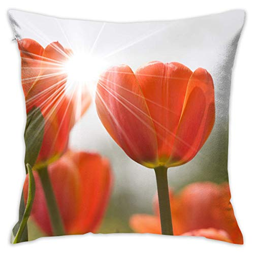 Klotr federe cuscino divano, 18x18 inches square throw pillow covers flowers tulips pattern pillow cushion cases premium pillow cases king for couch sofa bed