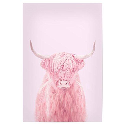artboxONE Poster 90x60 cm Natur Highland Cow hochwertiger Design Kunstdruck - Bild Natur von Paul Fuentes Design