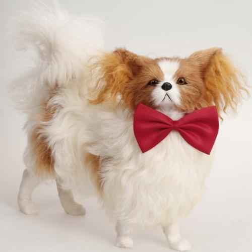 Haustier Hund Katze Fliege Krawatte - rot (Einfach Kostüme Zu Machen)
