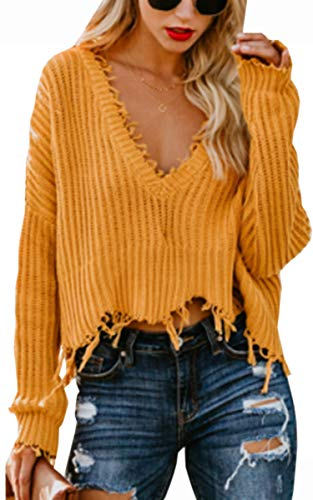 Angashion Women's Long Batwing Sleeves V Neck Tassel Sweater Tops Loose Sexy Knitted Jumper Pullover