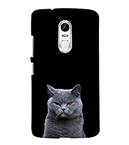 PrintVisa Designer Back Case Cover for Lenovo Vibe X3 (Cat wallpaper :: Cheshire Cat :: Pleasant cat Design :: Nice black color design :: Scaredy cat design :: stylish design wallpaper)