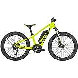 Bergamont E-Revox Junior 24 Kinder Pedelec Elektro Fahrrad grün/schwarz 2019