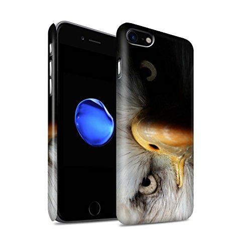 STUFF4 Matte Snap-On Hülle / Case für Apple iPhone 7 / Pfau Muster / Wilde Tiere Kollektion Adler / Raubvogel